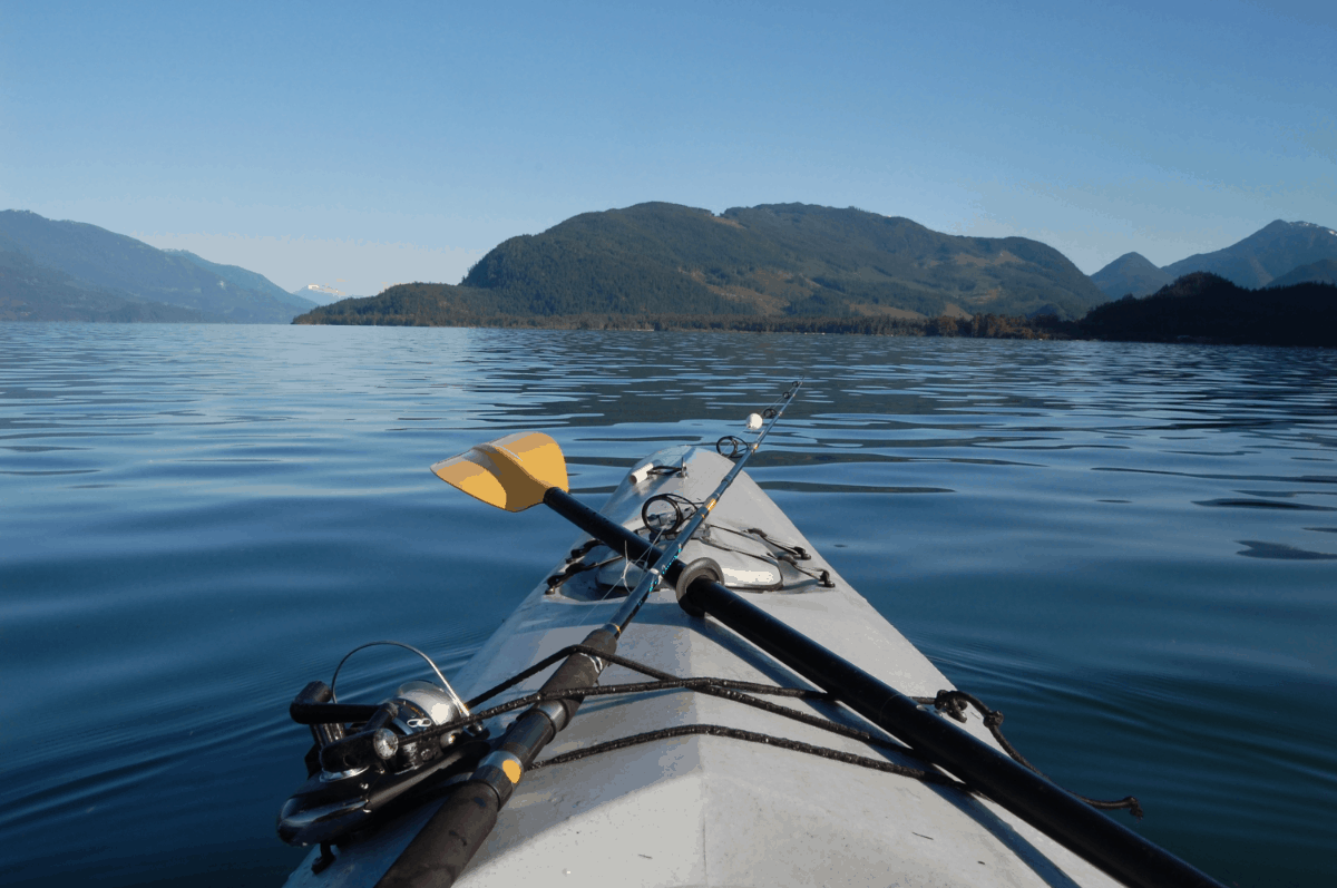 Best Kayak Paddle For Fishing Real Kayak